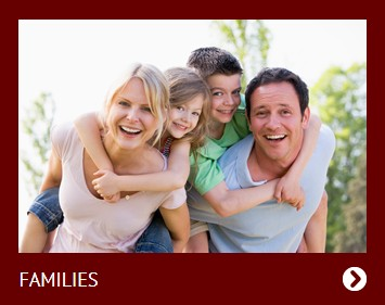 Storage Heater Grant - Families